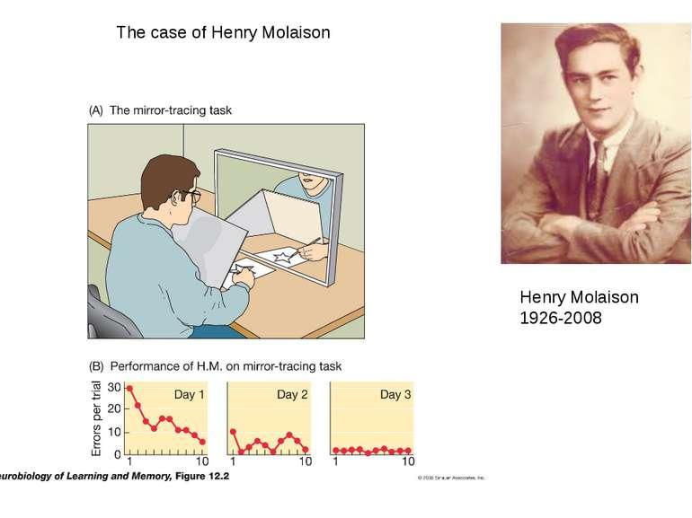 The case of Henry Molaison Henry Molaison 1926-2008
