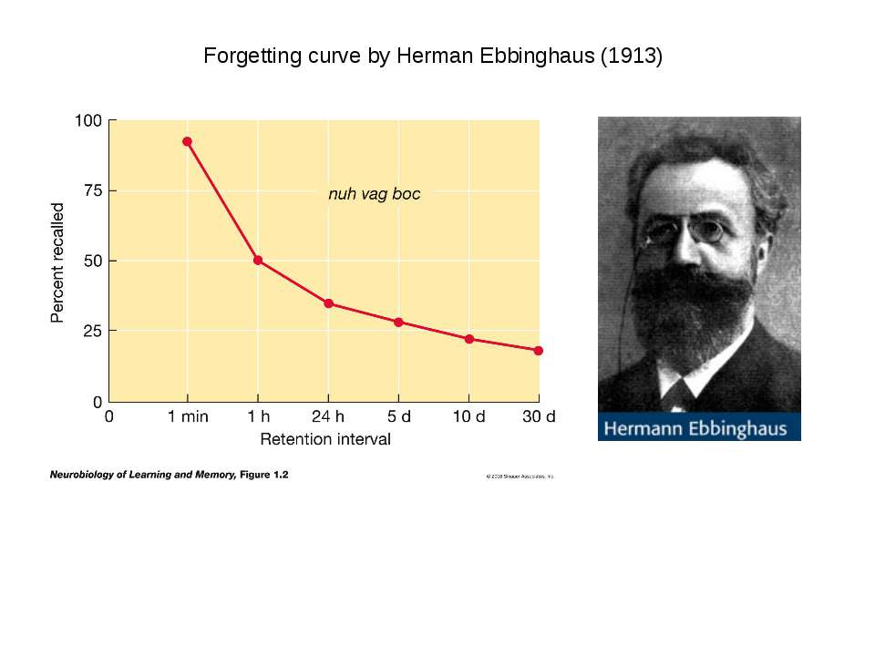 Forgetting curve by Herman Ebbinghaus (1913)