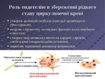 Роль ендотелію в збереженні рідкого стану циркулюючої крові утворює активний ...