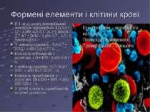 Формені елементи і клітини крові В 1 літрі циркулюючої крові чоловіків знаход...