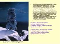 """Вольный перевод стихотворения Г.Гейне """"Ein Fichtenbaum steht einsam"""" (""""Сосна ..."""