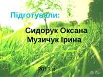 Підготували: Сидорук Оксана Музичук Ірина 2013 р.