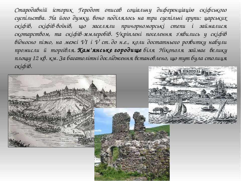 Стародавній історик Геродот описав соціальну диференціацію скіфського суспіль...