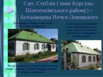 Смт. Стеблів ( нині Корсунь-Шевченківського району) – батьківщина Нечуя-Левиц...