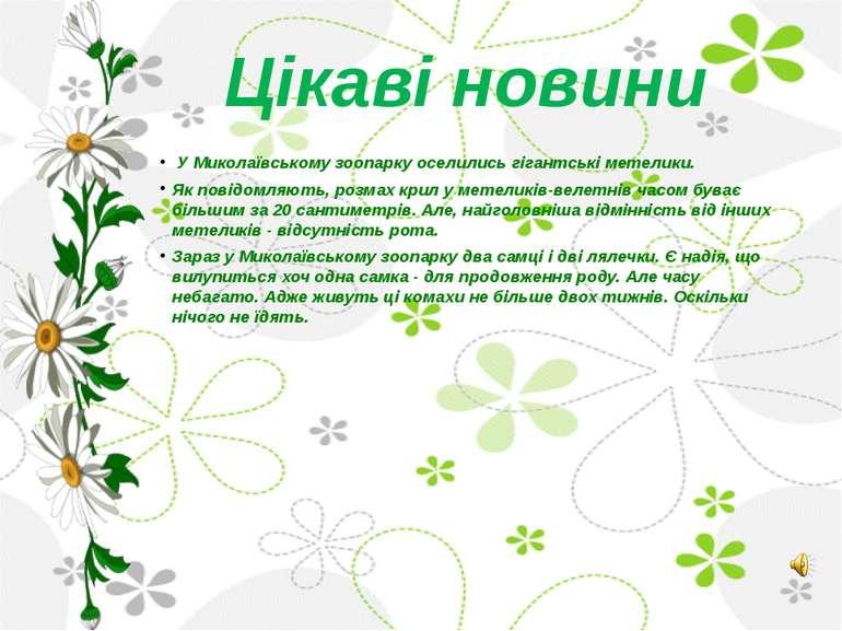 Цікаві новини У Миколаївському зоопарку оселились гігантські метелики. Як пов...