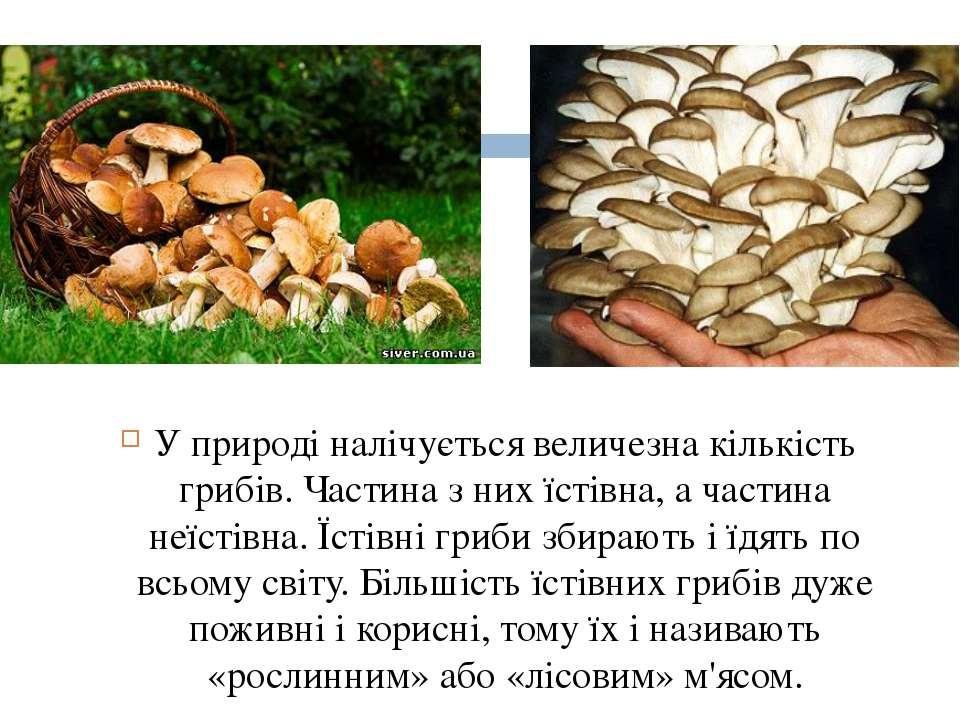 У природі налічується величезна кількість грибів. Частина з них їстівна, а ча...
