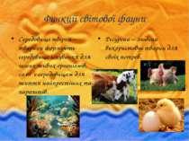 Функції світової фауни Середовище твірна – тварини формують середовище існува...