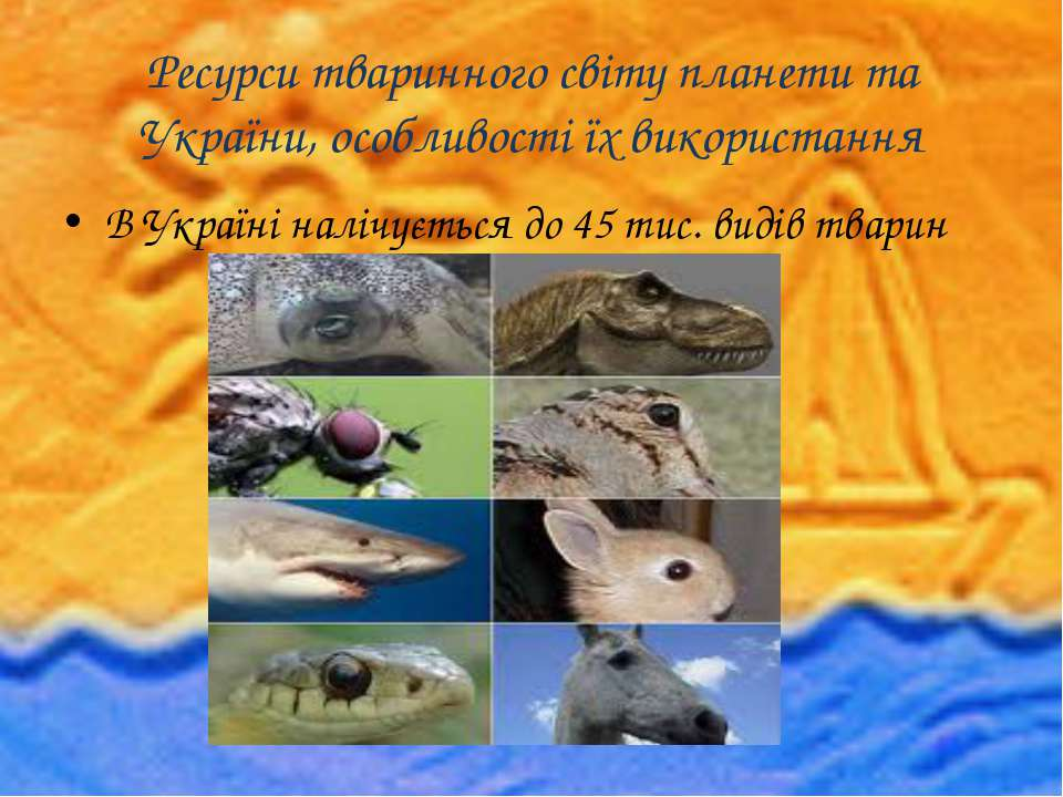 Ресурси тваринного світу планети та України, особливості їх використання В Ук...