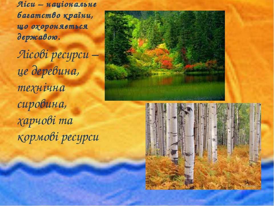 Ліси – національне багатство країни, що охороняється державою. Лісові ресурси...