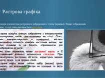 Растрова графіка Основним елементом растрового зображення є точка (крапка). Я...