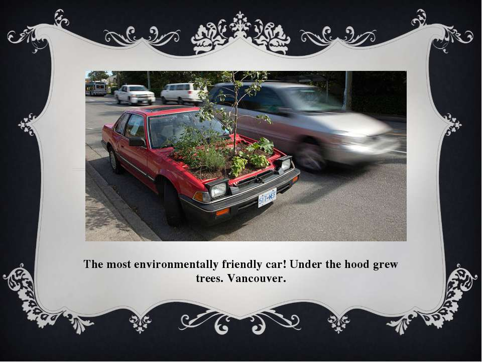 The most environmentally friendly car! Under the hood grew trees. Vancouver.