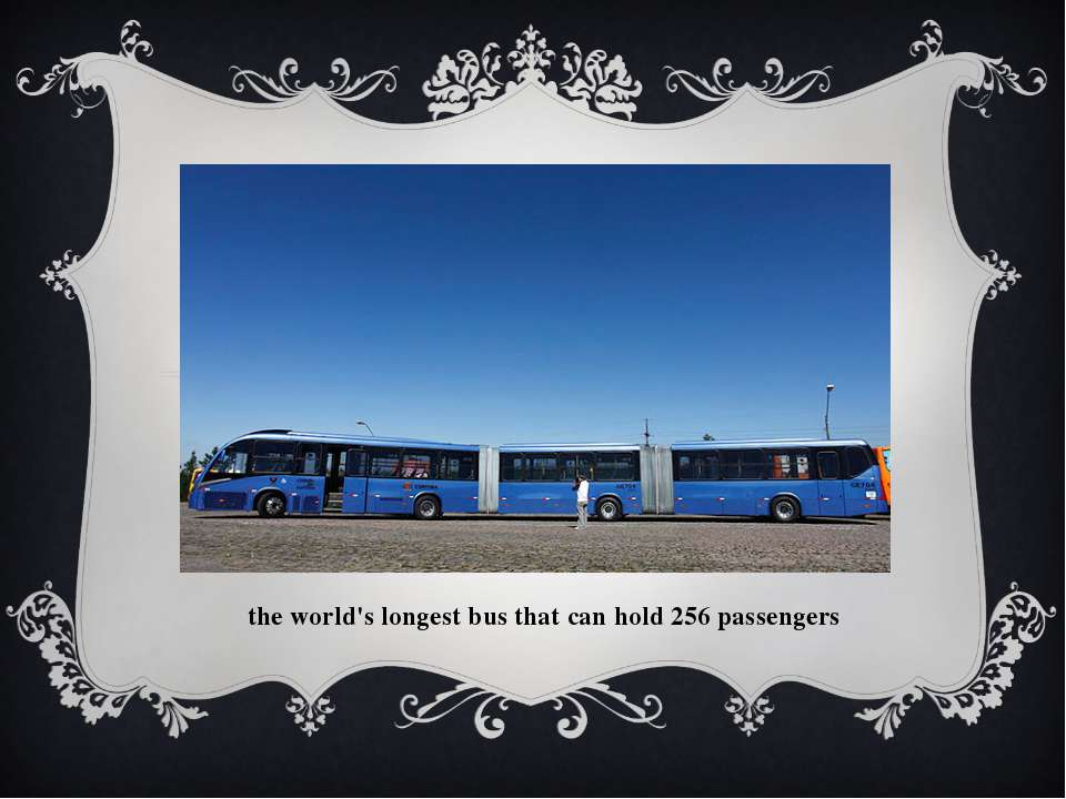 the world's longest bus that can hold 256 passengers