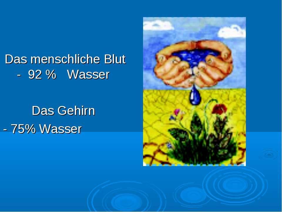 Das menschliche Blut - 92 % Wasser Das Gehirn - 75% Wasser