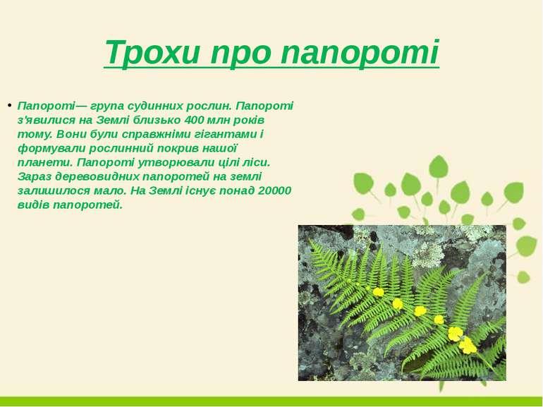Трохи про папороті Папороті— група судинних рослин. Папороті з'явилися на Зем...