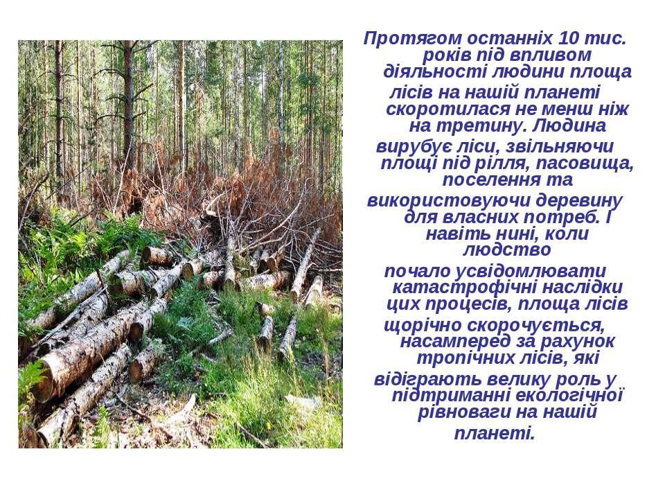 Протягом останніх 10 тис. років під впливом діяльності людини площа лісів на ...