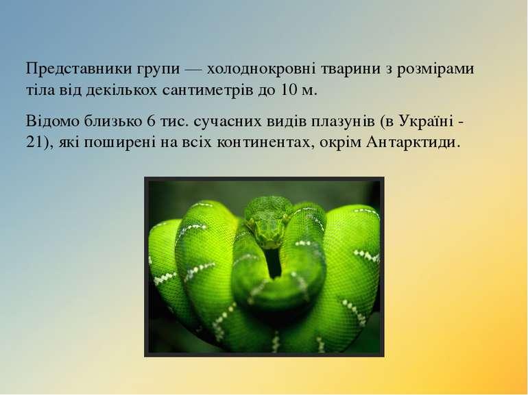 Представники групи— холоднокровні тварини з розмірами тіла від декількох сан...