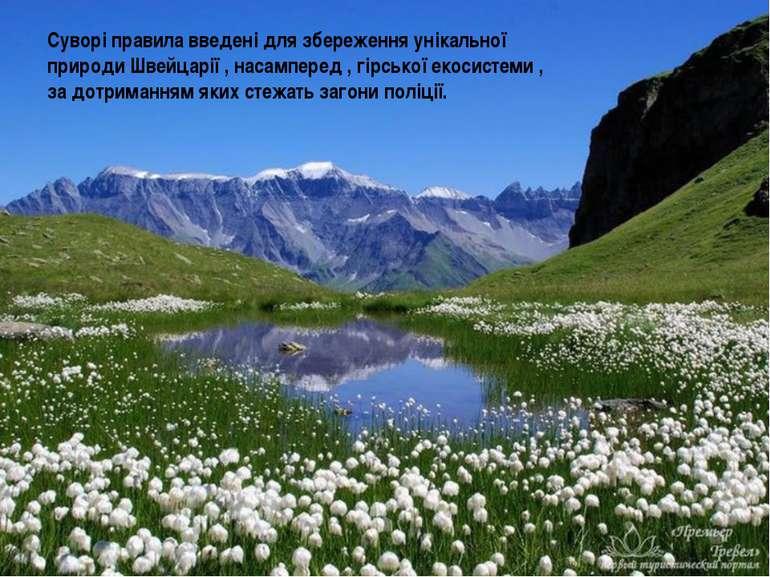 Суворі правила введені для збереження унікальної природи Швейцарії , насампер...