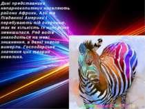Дикі представники непарнокопитних населяють райони Африки, Азії та Південної ...