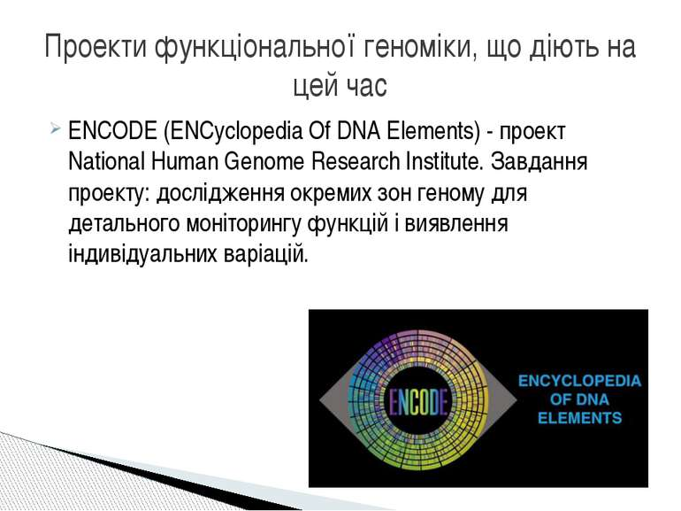 ENCODE (ENCyclopedіa Of DNA Elements) - проект Natіonal Human Genome Research...