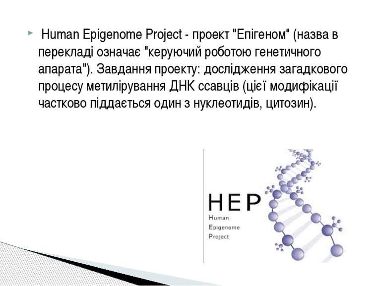 """Human Epіgenome Project - проект """"Епігеном"""" (назва в перекладі означає """"керую..."""