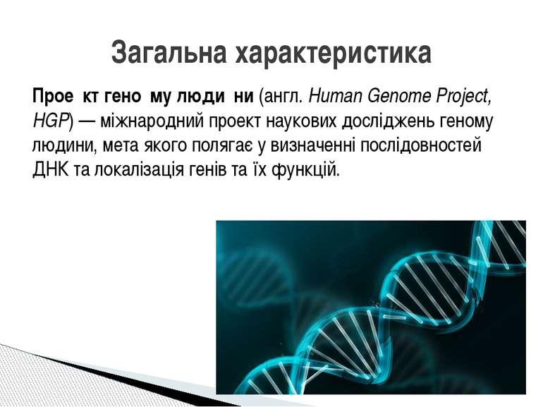 Прое кт гено му люди ни(англ.Human Genome Project, HGP)— міжнародний проек...