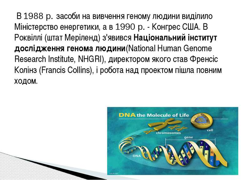 В 1988 р. засоби на вивчення геному людини виділило Міністерство енергетики,...
