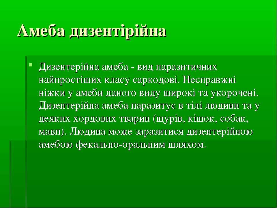 Амеба дизентірійна Дизентерійна амеба - вид паразитичних найпростіших класу с...