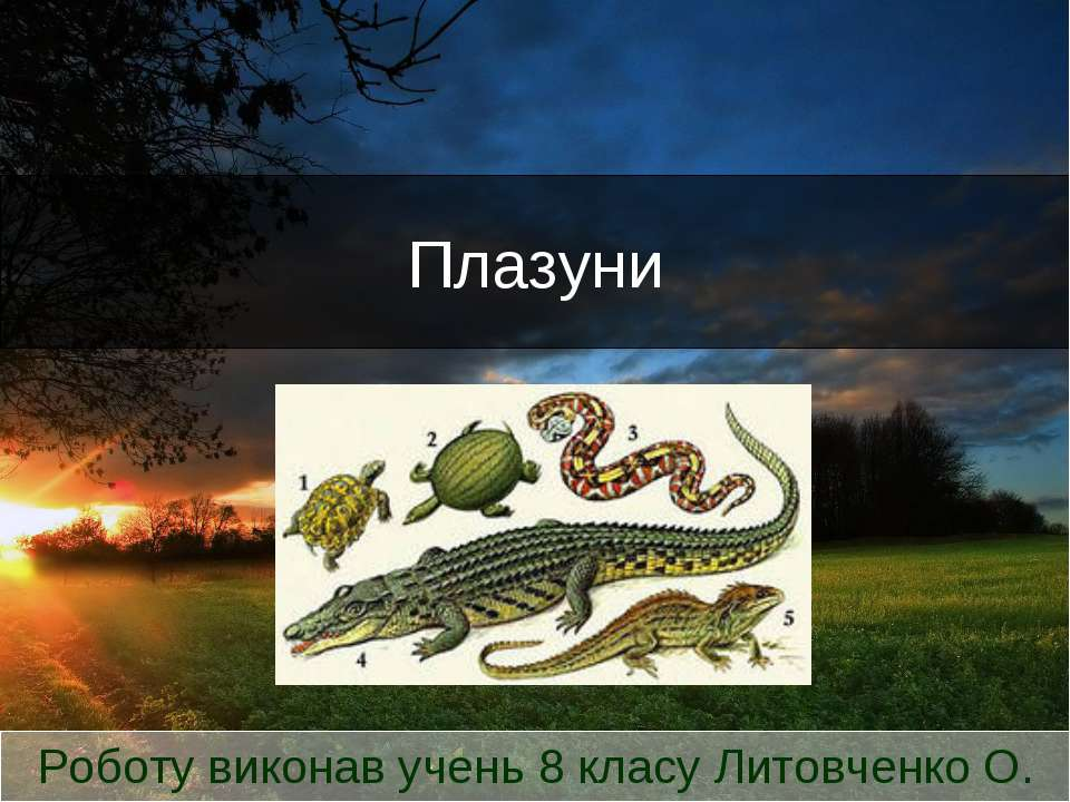 Плазуни Роботу виконав учень 8 класу Литовченко О.