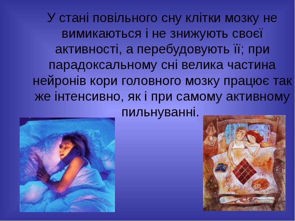 У стані повільного сну клітки мозку не вимикаються і не знижують своєї активн...
