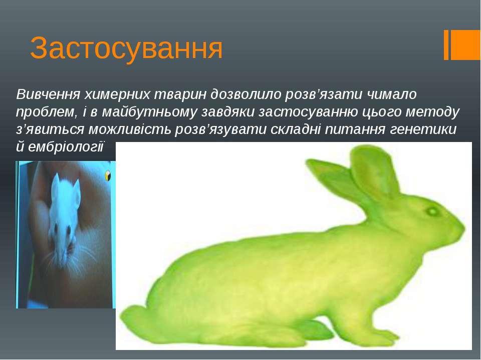 Вивчення химерних тварин дозволило розв'язати чимало проблем, і в майбутньому...