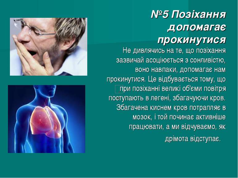 №5 Позіхання допомагає прокинутися Не дивлячись на те, що позіхання зазвичай ...