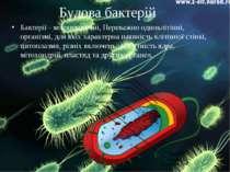 Будова бактерій Бактерії - мікроскопічні, Переважно одноклітінні, організмі, ...