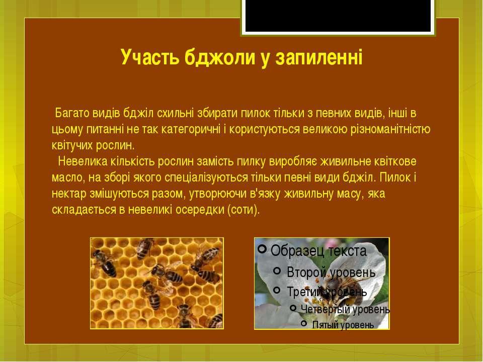Багато видів бджіл схильні збирати пилок тільки з певних видів, інші в цьому ...