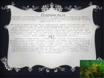 Важливою особливістю членистоногих, яка відрізняє їх від кільчастих червів і ...