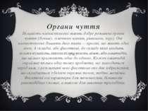 Органи чуття Більшість членистоногих мають добре розвинені органи чуття (доти...