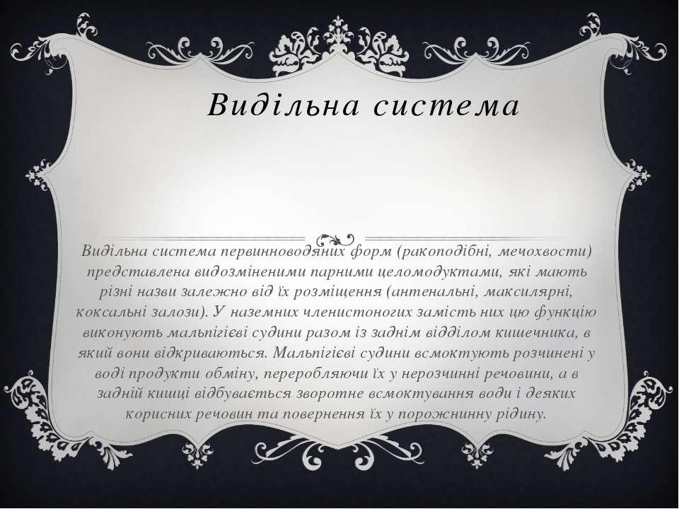Видільна система Видільна система первинноводяних форм (ракоподібні, мечохвос...