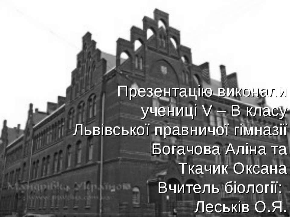 Презентацію виконали учениці V – В класу Львівської правничої гімназії Богачо...