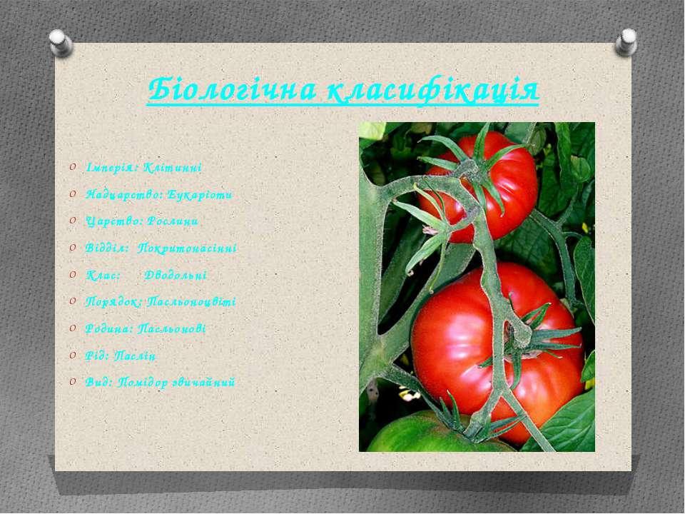 Біологічна класифікація Імперія: Клітинні Надцарство: Еукаріоти Царство: Росл...