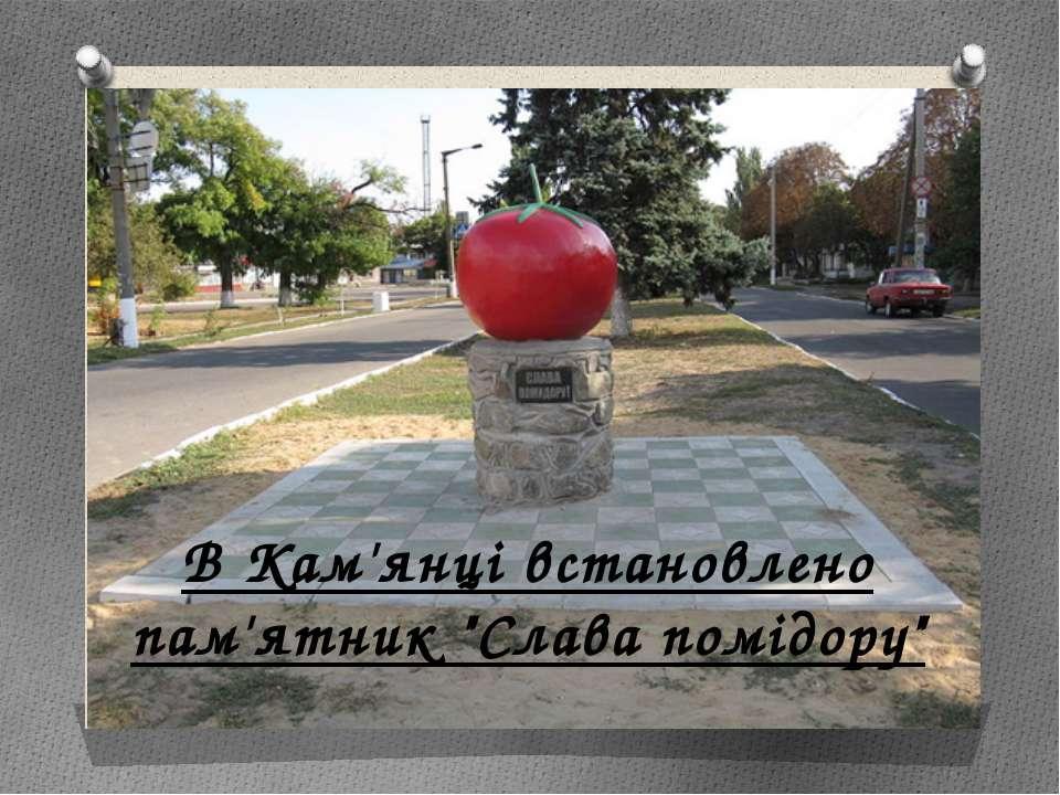 """В Кам'янці встановлено пам'ятник """"Слава помідору"""""""