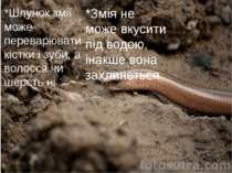 *Шлунок змії може переварювати кістки і зуби, а волосся чи шерсть ні *Змія не...