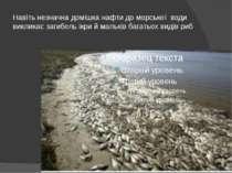 Навіть незначна домішка нафти до морської води викликає загибель ікри й маль...