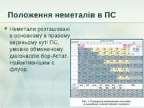 Положення неметалів в ПС Неметали розташовані в основному в правому верхньому...