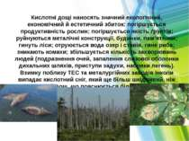 Кислотні дощі наносять значний екологічний, економічний й естетичний збиток: ...