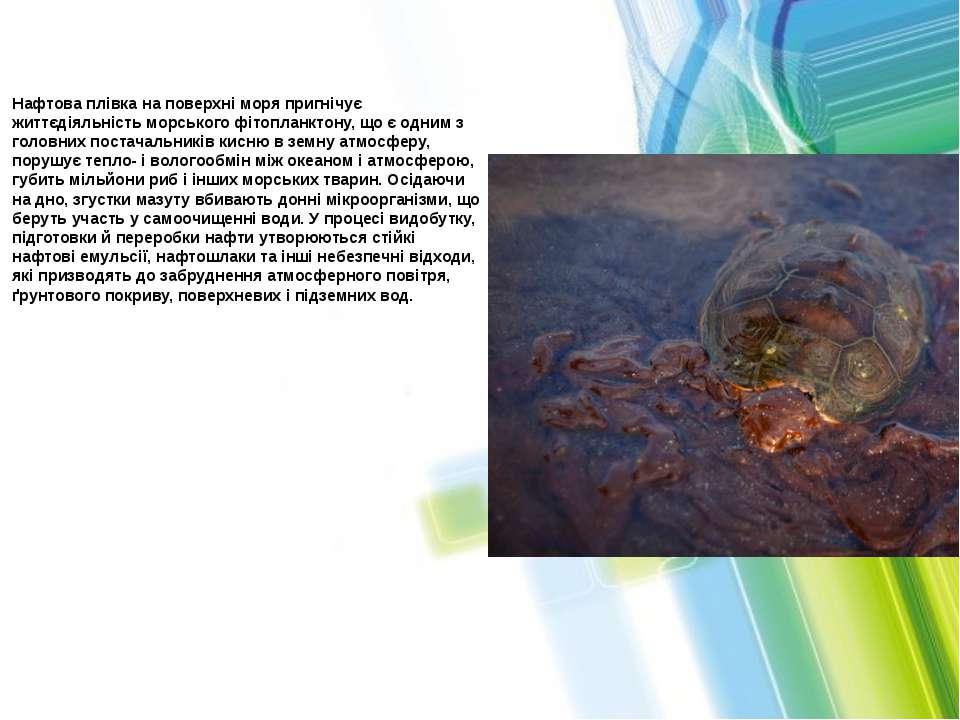 Нафтова плівка на поверхні моря пригнічує життєдіяльність морського фітопланк...