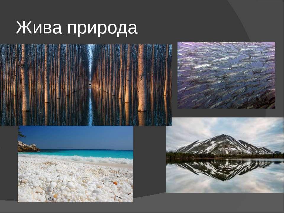 Жива природа