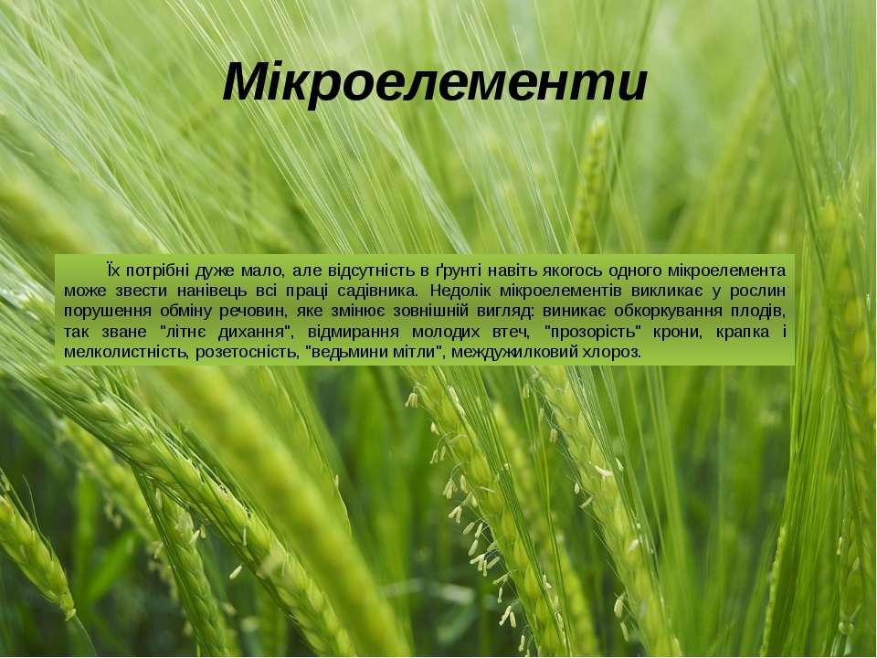 Мікроелементи Їх потрібні дуже мало, але відсутність в ґрунті навіть якогось ...