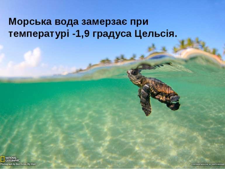 Морська вода замерзає при температурі -1,9 градуса Цельсія.