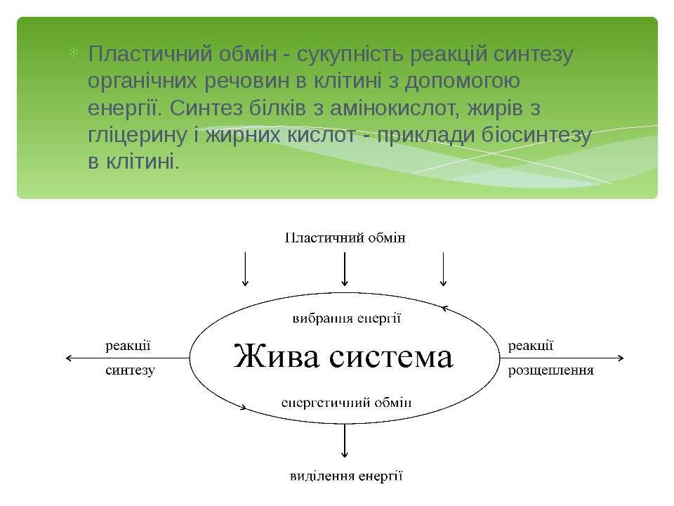 Міксотрофна асиміляція спостерігається у організмів, які містять пігмент хлор...