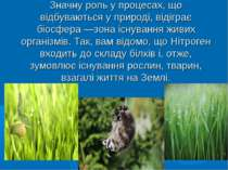 Значну роль у процесах, що відбуваються у природі, відіграє біосфера —зона іс...