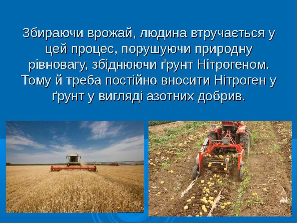 Збираючи врожай, людина втручається у цей процес, порушуючи природну рівноваг...